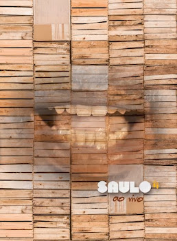 saulo Download   Saulo Fernandes: Ao Vivo   DVDRip AVI + RMVB (2014)