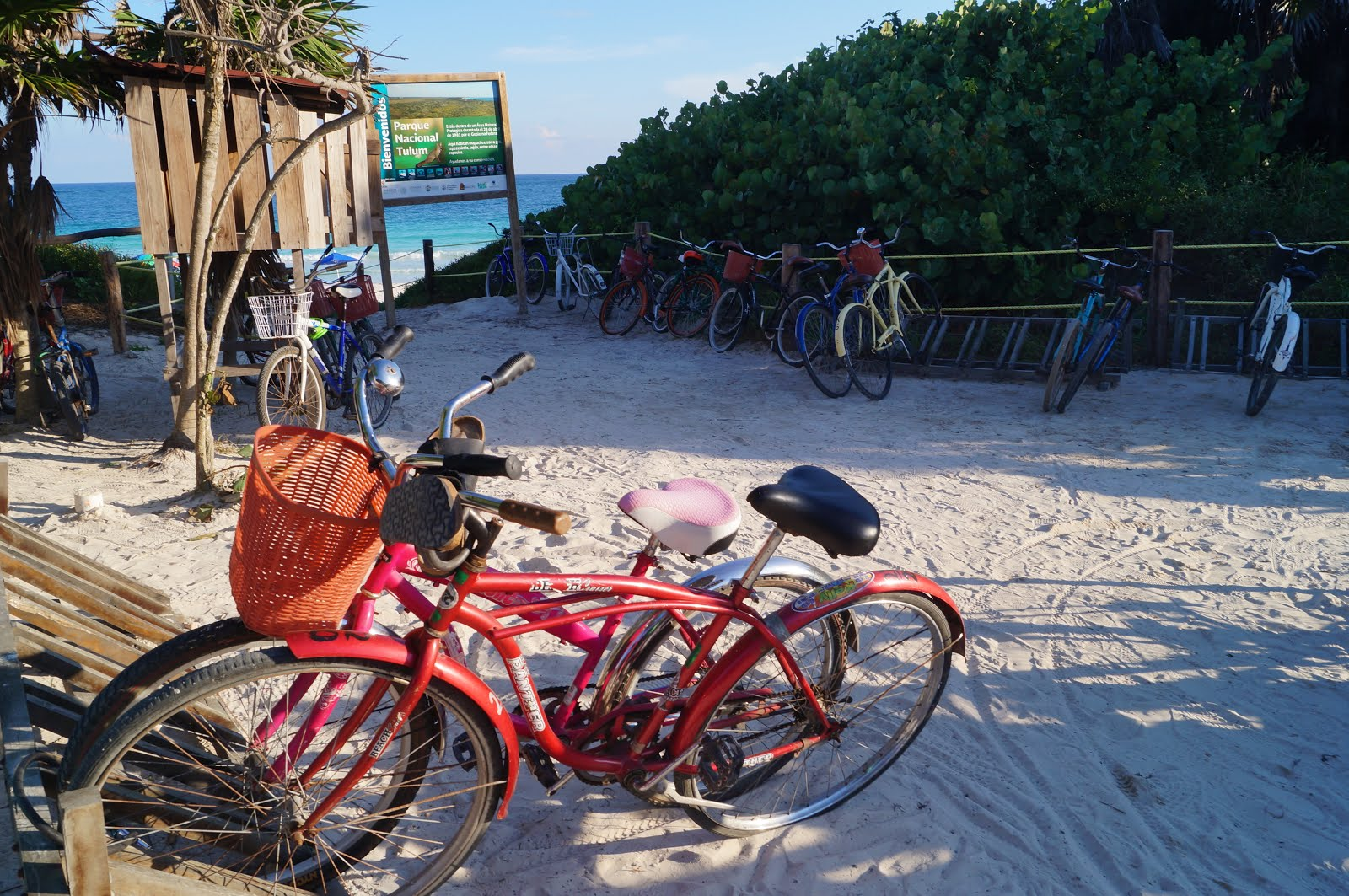 Rented bicycles entering beach in Tulum