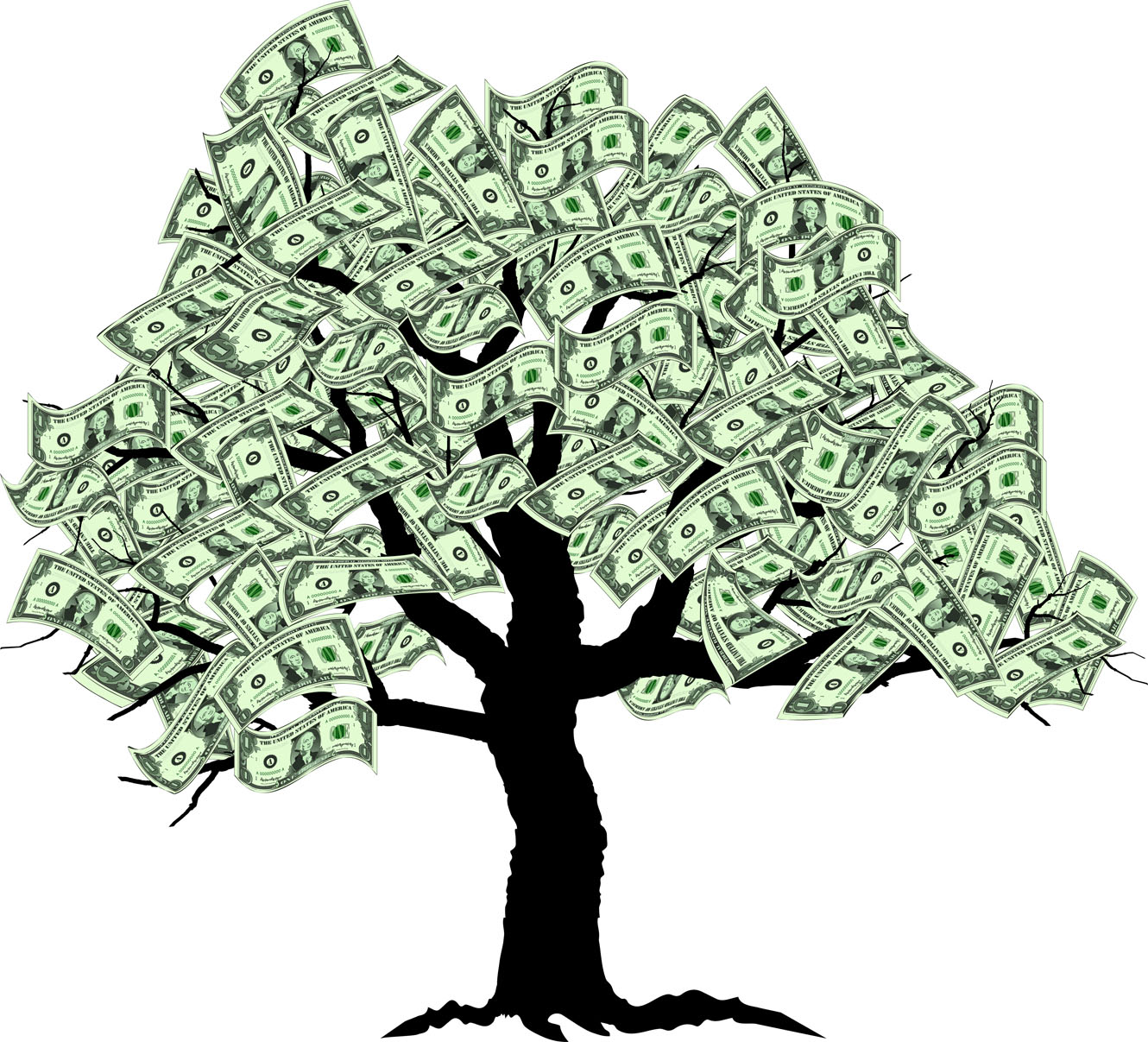 Why I Dont And Never Did Believe Money Grows On Trees