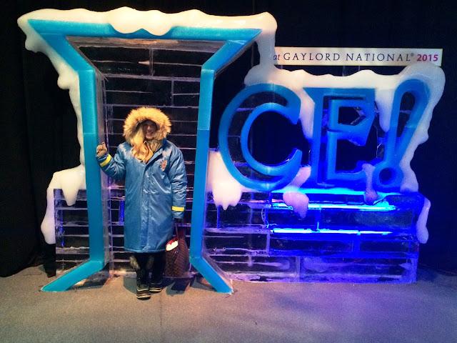 maryland lifestyle blogger gaylord national ice