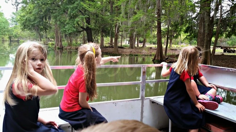 zoo boat ride