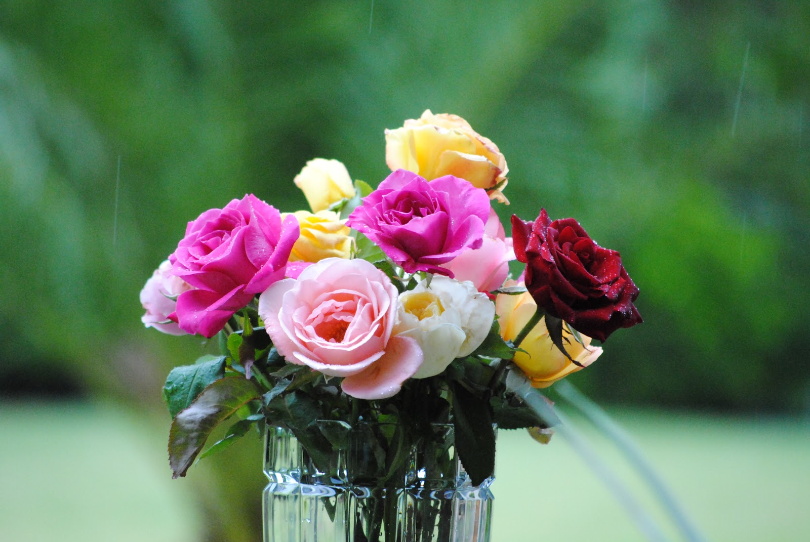 Who Knew Ten Tips For Beautiful Bouquets