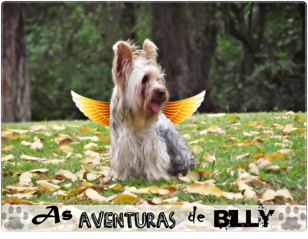 As Aventuras de Billy