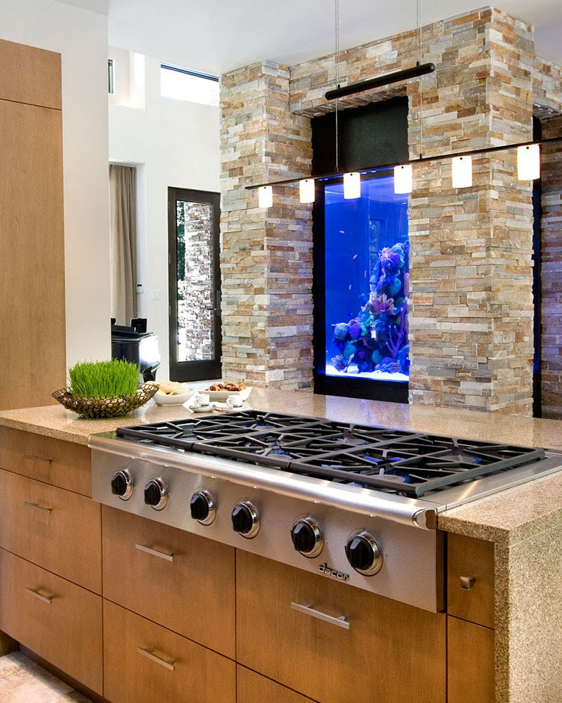 modern fish tanks kitchen
