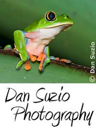 Dan Suzio Photography