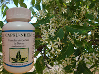 CAPSULAS DE CORTEZA DE NEEM