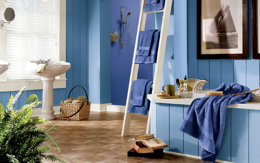 Royal Blue Bathroom Paint