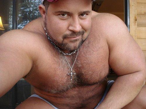 Gay bear videos