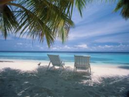 férias vacationes dinheiro praia ganha palmeiras