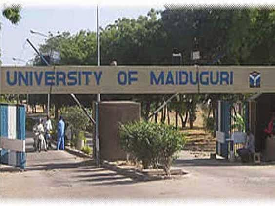 university of maiduguri ban students handbags