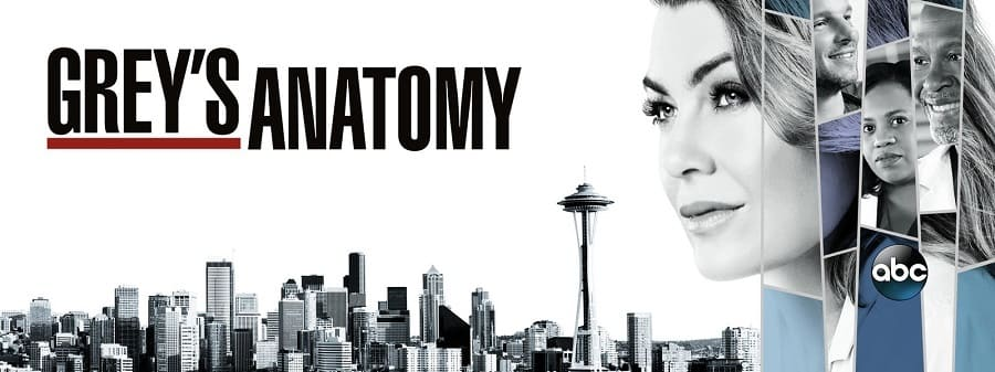 Greys Anatomy - Anatomia de Grey 15ª Temporada Completa 2018 Série 1080p 720p HD completo Torrent
