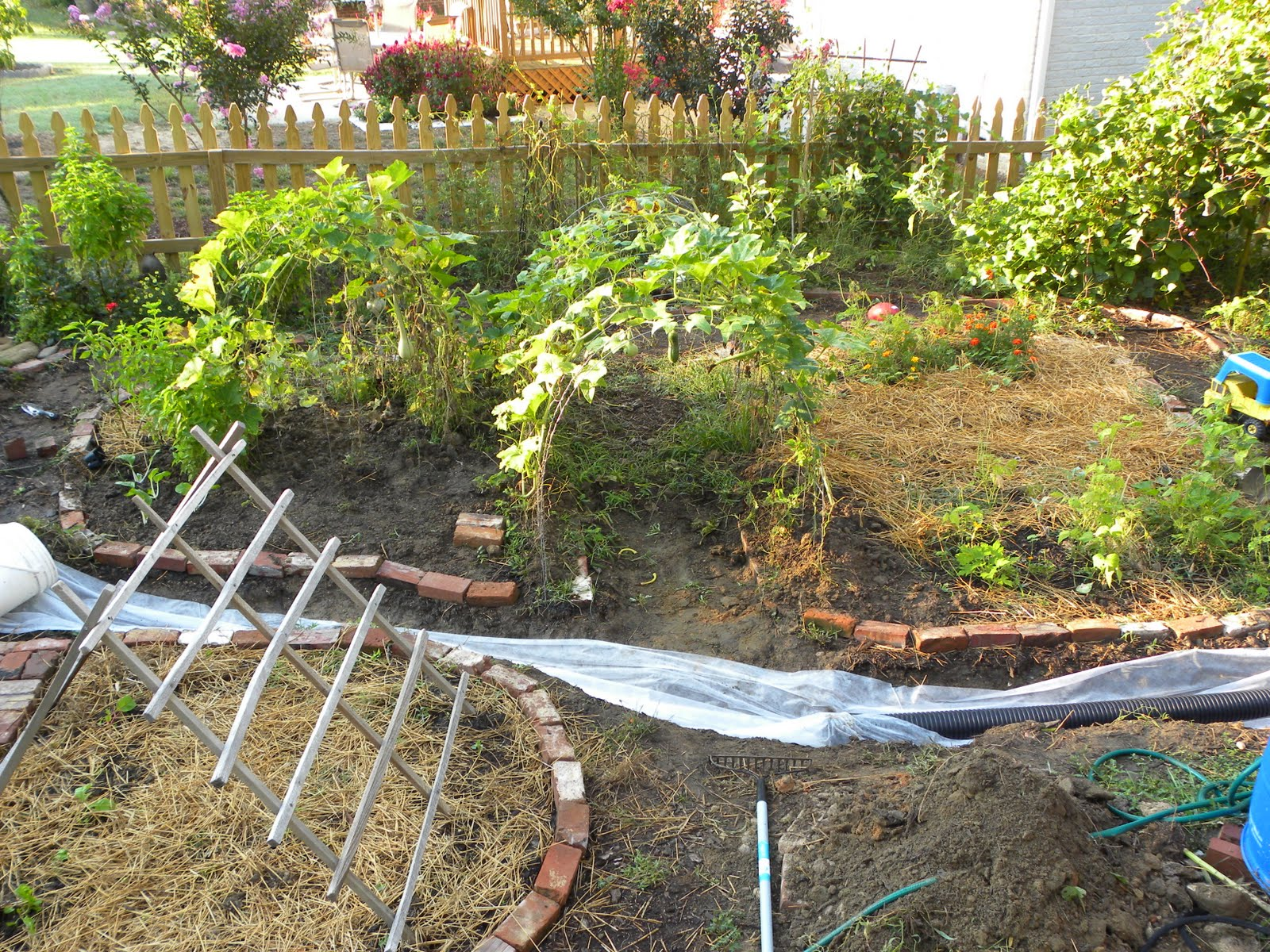 drainage my garden cesspool part two love sown