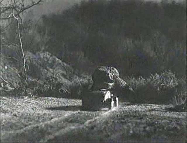 247 AUTOHOLIC: Midweek Movie - The Giant Gila Monster