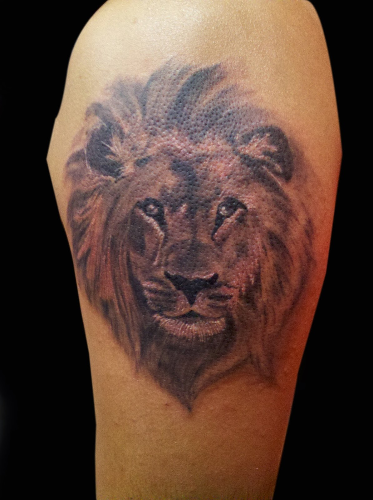 Best Tattoos Ever Done For Women Lion tattoo leo tattoo tattoos