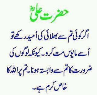 Zareen Hazrat Ali A.S. | Hazrat Ali A.S ky Aqwal in urdu | Hazrat Ali ...