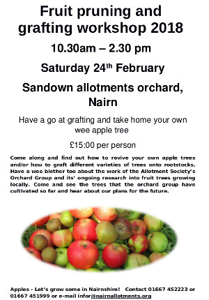 Grafting and pruning workshop Sat 24th Feb