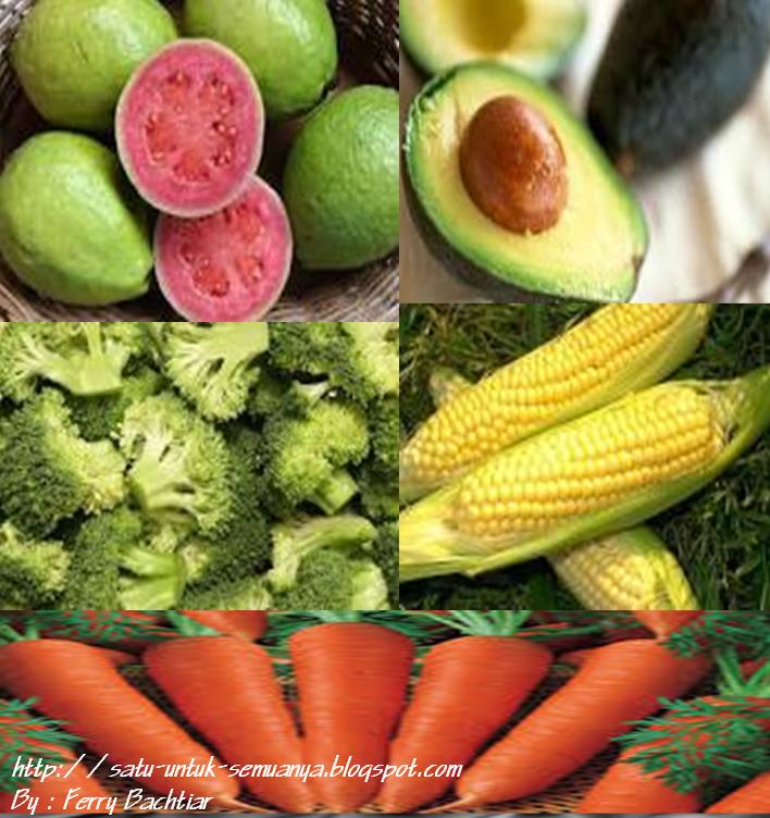 kandungan dan khasiat buah dan sayur