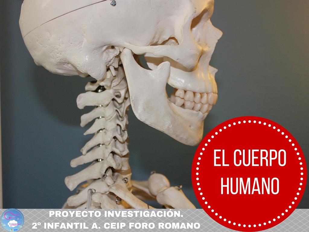 "PROYECTO ""EL CUERPO HUMANO"". PRIMER TRIMESTRE 2º INFANTIL. CURSO 2015-16"