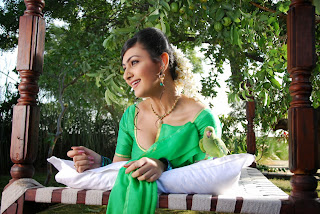 Actress Neelam Upadyaya Latest  Pictures in Green Saree  0013.jpg