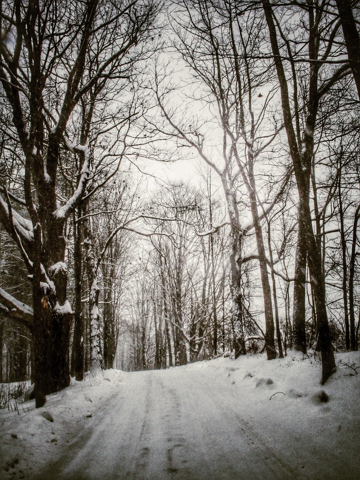 Snowy Vermont Country Road, #snow #snowstorm #hercules #vermont 2013