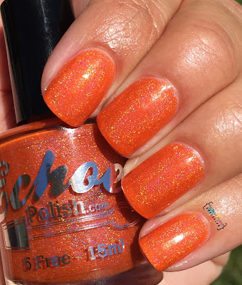 Echoes Polish My Safety Color