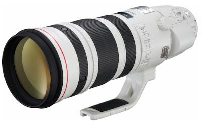 canon, canon 200-400, canon EF 200-400 f/4L, canon EF 200-400 f/4L IS USM 1.4x