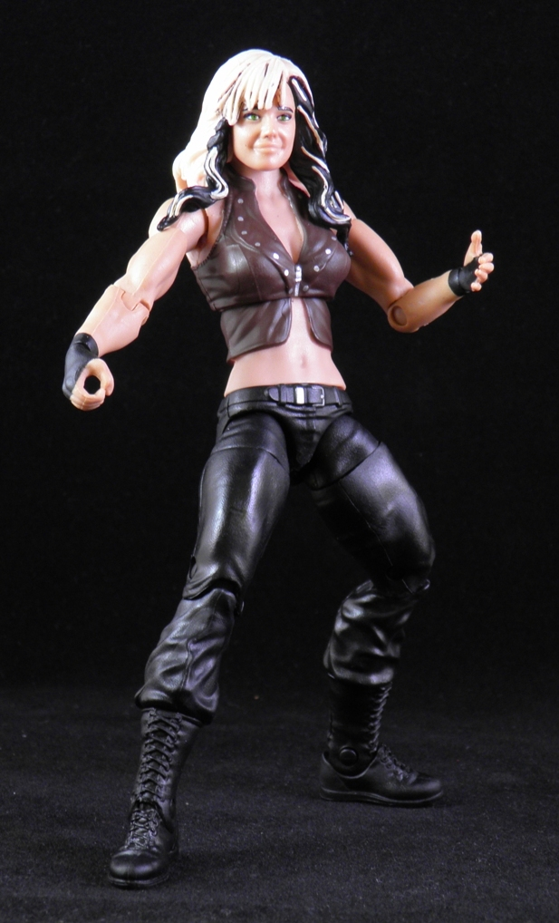 Wwe Kaitlyn Action Figure She's Fantastic: WWE B...