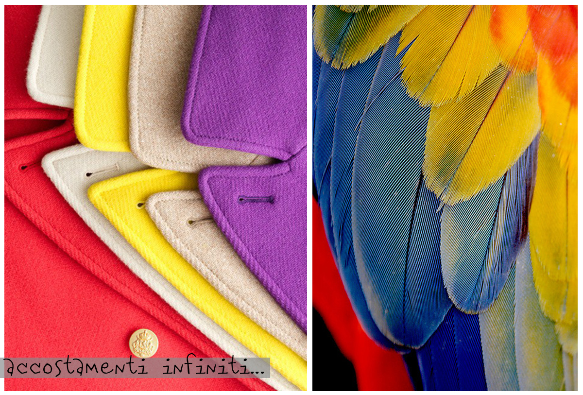accostamenti infiniti, colorful, coat, feather