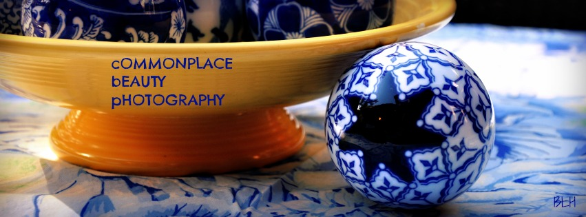 Commonplace Beauty Photography