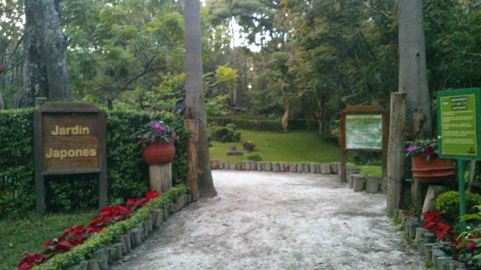 F sica historia y asuntos universitarios el parque los for Arboles para jardin japones