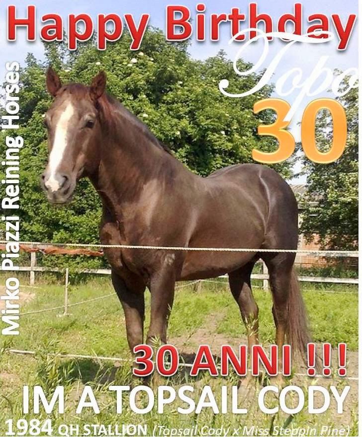 2014: 30 ANNI DEL TOPO !!!!!