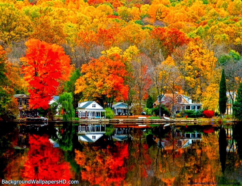 autumn scenes screensavers wallpaper best wallpaper background