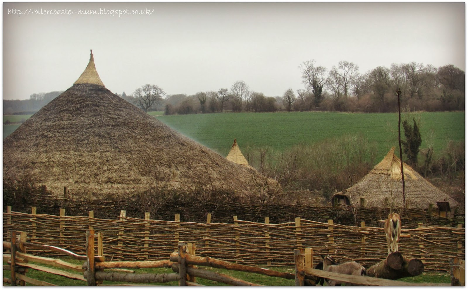 Celtic Village - Butser Ancient Farm