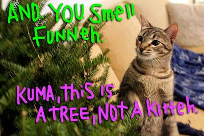 cat-christmas-tree-03