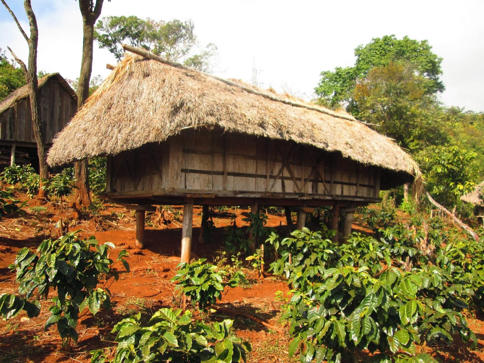 Architecture traditionelle laotienne et autres histoires for Maison traditionnelle laos