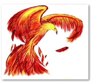 phoenix drawing for sale at zazzle