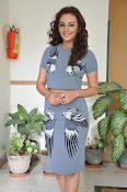 Seerath kapoor latest glam pics-thumbnail-12