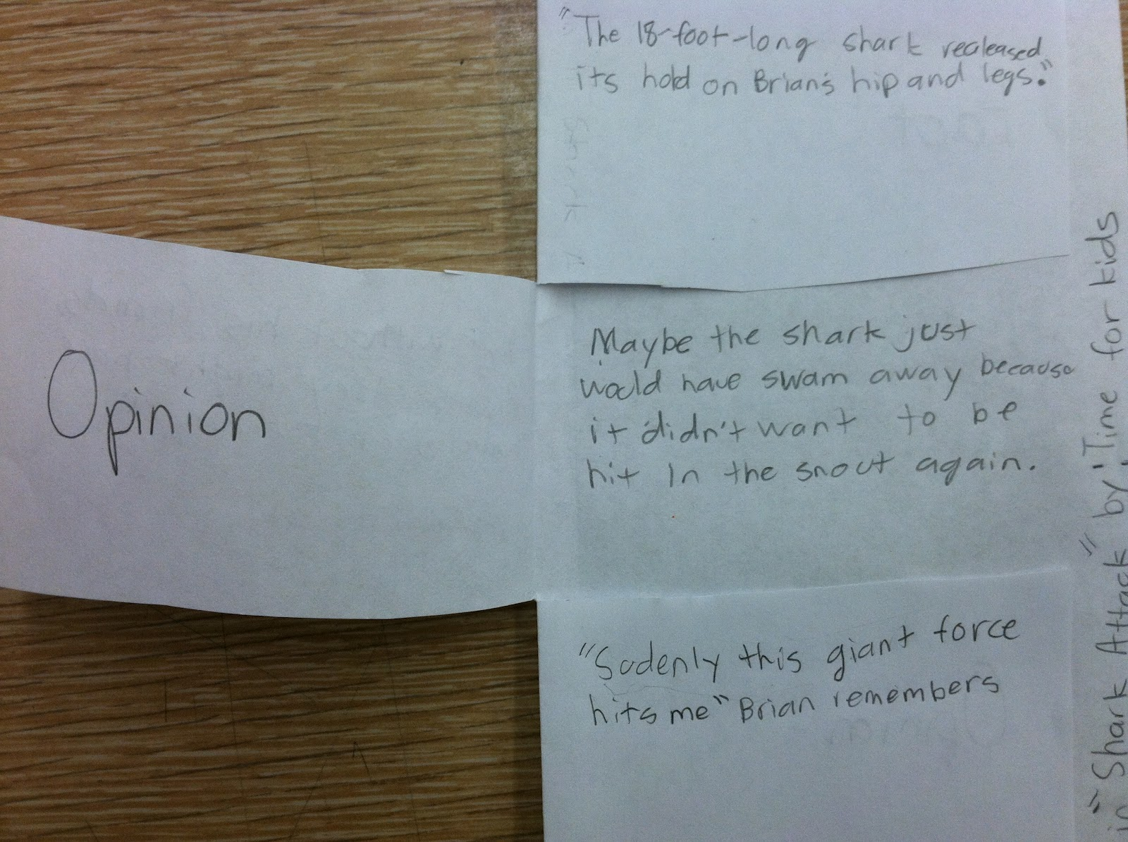 Foldable Fact and Opinion Activities, Fact and Opinion Interactive ...