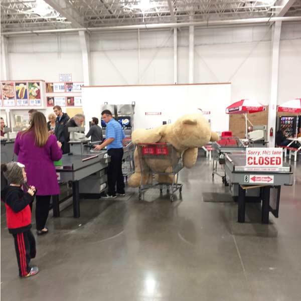 big bear sold at Costco