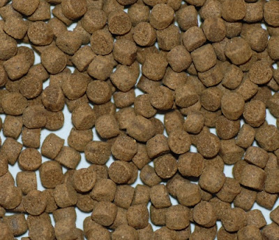Fish Feed pellet Type