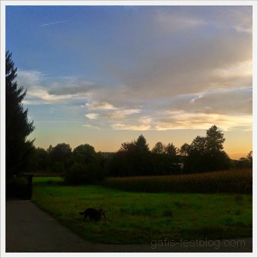 Schöner Herbstabend