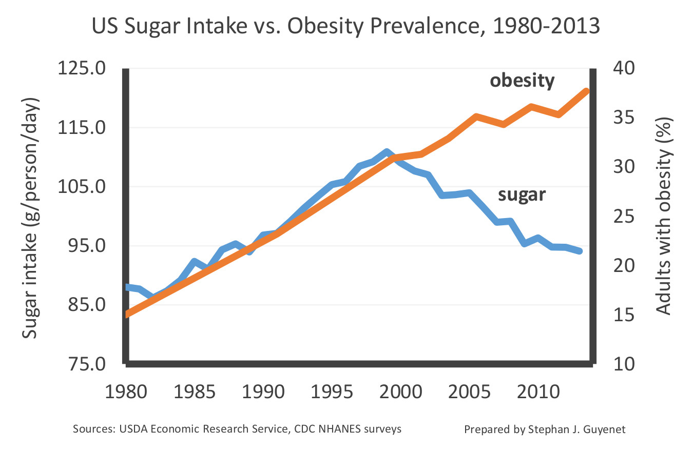The Negative Effects of Sugar