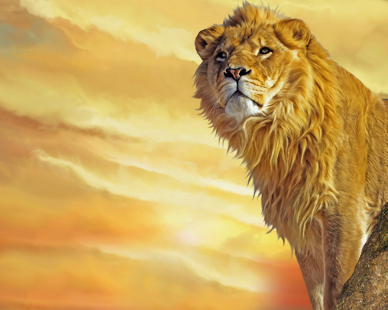 King Of Jungle Lion Wallpaper Image Wallpaper Theme