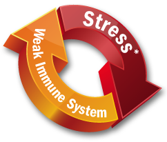 Weak Immunity System Naturally