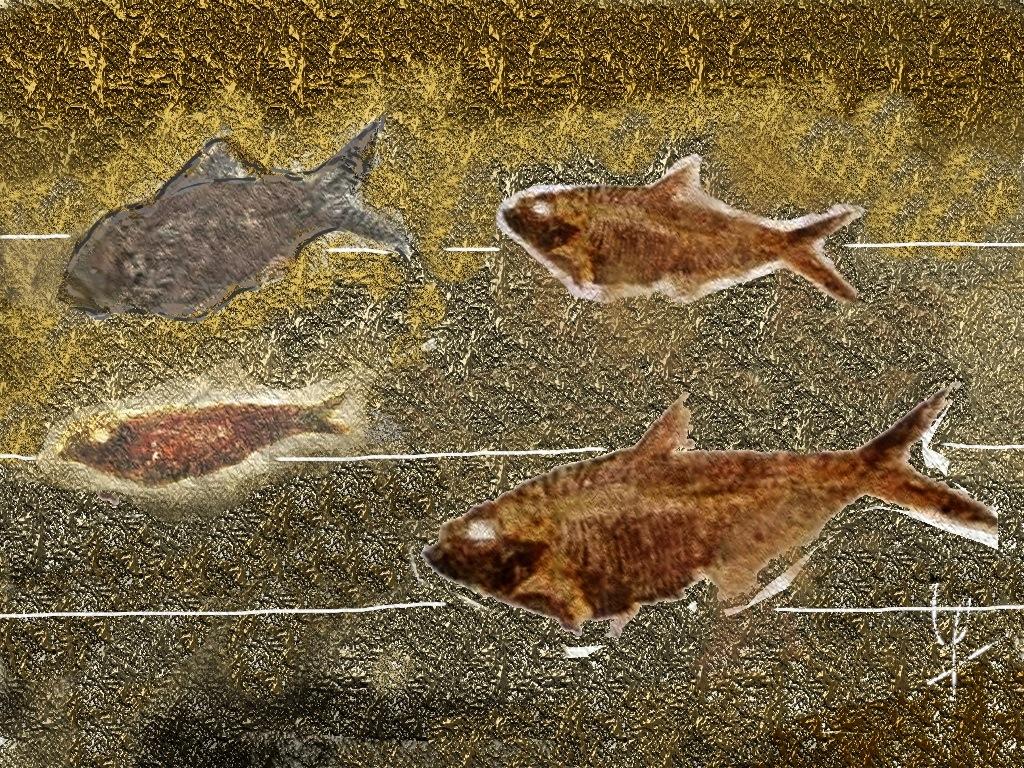 los peces muertos: