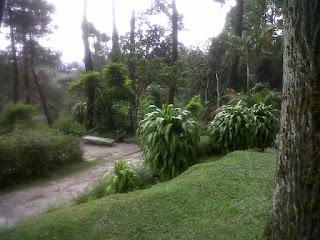 zugamedia.blogspot.com