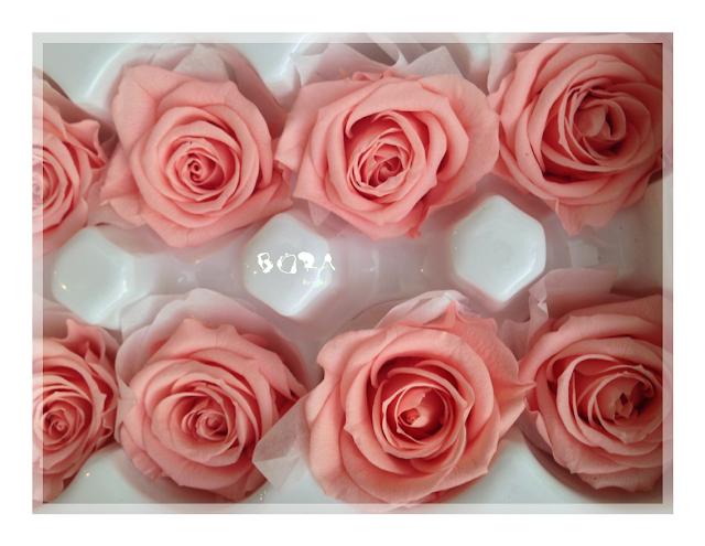 rosa preservada para ramo de novia