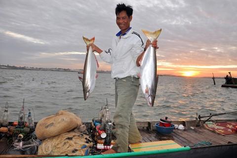 Cá bông lau và cá tra