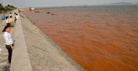 det røde hav