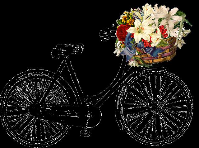 Jenis – Jenis Dan Cara Merawat Bunga Anggrek